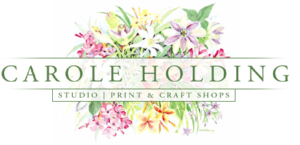 Carole Holding